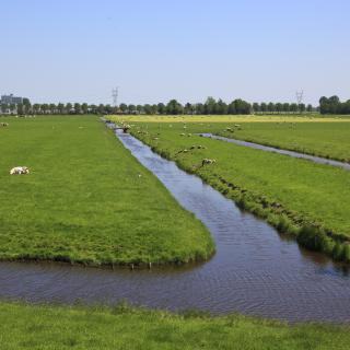 The beemster polder
